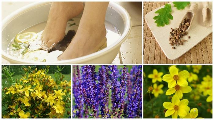 Лечение потливости ног: все лучшие способы народной и официальной медицины