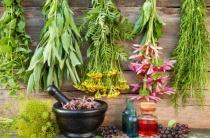 Лечение гипергидроза народными средствами: вся правда о растениях